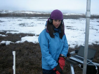 Earth scientist Natalie Boelman and her colleagues are automating the analysis of five breeding seasons of songbird calls in the Arctic. (Heather Greaves)